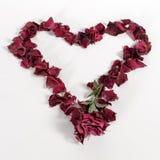 Corazón de Rose Petals Imagen de archivo