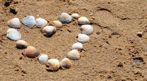 Corazón de seashells Imagen de archivo