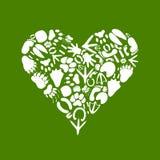 Corazón de un animal2 Imagen de archivo libre de regalías