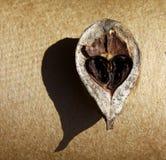 Corazón de una tuerca. Fotos de archivo