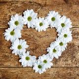 Corazón decorativo de la tarjeta del día de San Valentín de las margaritas blancas de la primavera Fotografía de archivo