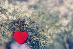 Corazón decorativo en rama nevada del abeto Tarjeta del día de tarjeta del día de San Valentín Imagen de archivo