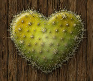 Corazón del cactus Fotos de archivo