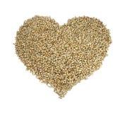 Corazón del cereal Imagen de archivo libre de regalías