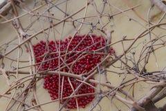 Corazón del día de tarjeta del día de San Valentín entre las ramas Fotos de archivo