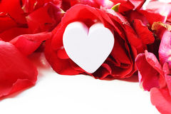 Corazón del día de tarjetas del día de San Valentín en la tarjeta de plata de la caja y de felicitación aislada en blanco Imagen de archivo libre de regalías