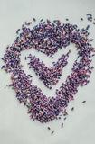 Corazón del día de tarjetas del día de San Valentín hecho de la flor de la lavanda Fotografía de archivo