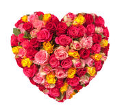 Corazón del día de tarjetas del día de San Valentín hecho de las rosas aisladas en el fondo blanco Imágenes de archivo libres de regalías