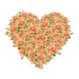 Corazón del día de tarjetas del día de San Valentín hecho de rosas de la acuarela Fotografía de archivo libre de regalías