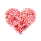 corazón del día de tarjetas del día de San Valentín rosado de las rosas Foto de archivo libre de regalías