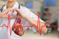 Corazón del doctor que hace forma del corazón Imagenes de archivo