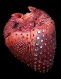 Corazón del encanto. Fotografía de archivo libre de regalías