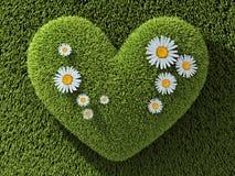 Corazón del extracto uno en hierba Imagen de archivo libre de regalías