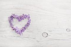 Corazón del flor violeta o azul de la lila en de madera lamentable blanco foto de archivo