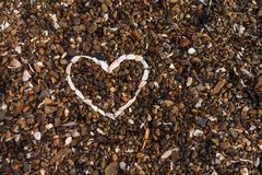 Corazón del fondo de las conchas marinas fotos de archivo