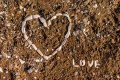 Corazón del fondo de las conchas marinas foto de archivo