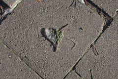 Corazón del hielo en la tierra Fotos de archivo libres de regalías