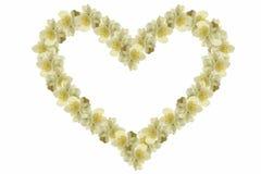 Corazón del jazmín Fotos de archivo