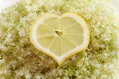 Corazón del limón Fotos de archivo