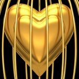 Corazón del oro en jaula de oro Fotografía de archivo