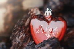 Corazón del ` s de la tarjeta del día de San Valentín en cortezas de árbol Imagen de archivo