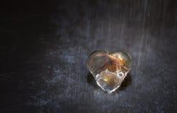 Corazón del vidrio Fotos de archivo