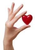 Corazón a disposición Foto de archivo