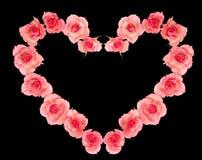 Corazón dulce de la tarjeta del día de San Valentín de rosas Imagen de archivo libre de regalías
