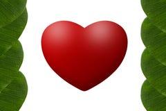 Corazón en fondo del blanco del marco de las hojas Imagen de archivo libre de regalías