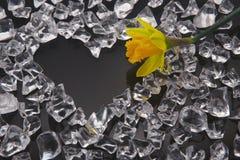 Corazón en hielo Foto de archivo libre de regalías
