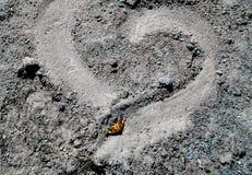 Corazón en la arena con la mariposa fotos de archivo libres de regalías
