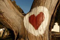 Corazón en la madera Imágenes de archivo libres de regalías
