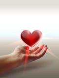 Corazón en la mano ilustración del vector