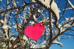 Corazón en la pinza Foto de archivo libre de regalías