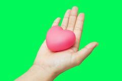 Corazón en las manos aisladas en fondo verde de la llave de la croma de la pantalla Fotografía de archivo