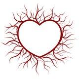 Corazón en las venas nimbo ilustración del vector