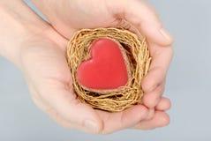 Corazón en manos Fotografía de archivo