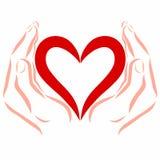 Corazón en manos seguras, modelo