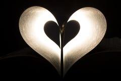Corazón en paginaciones Imagen de archivo