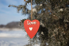 Corazón en una rama Fotos de archivo libres de regalías