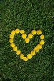 Corazón floral Imagen de archivo libre de regalías