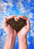 Corazón fragante del café Imágenes de archivo libres de regalías