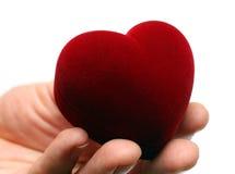 Corazón gidting de la mano del hombre el día de tarjeta del día de San Valentín Fotos de archivo libres de regalías