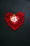 Corazón hecho por los pétalos color de rosa Imágenes de archivo libres de regalías