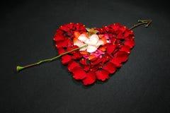 Corazón hecho por los pétalos color de rosa Imagen de archivo