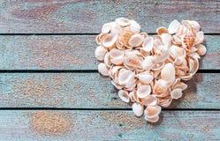 Corazón hermoso de la concha marina en la madera rústica fotografía de archivo libre de regalías
