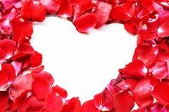 Corazón hermoso de los pétalos color de rosa rojos aislados en blanco Foto de archivo
