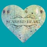 Corazón marcado con una cicatriz fotografía de archivo libre de regalías