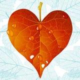 Corazón otoñal y fondo inconsútil de la hoja Fotografía de archivo