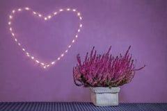 Corazón púrpura foto de archivo libre de regalías
